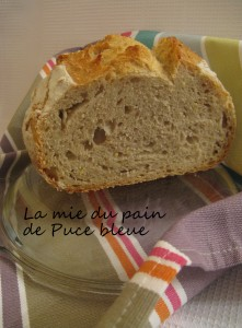 puce-bleue-mie