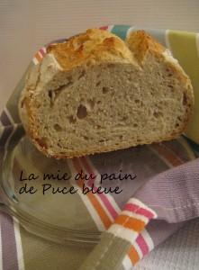 puce-bleue-mie