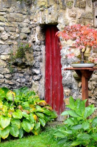 jardin-automnal2