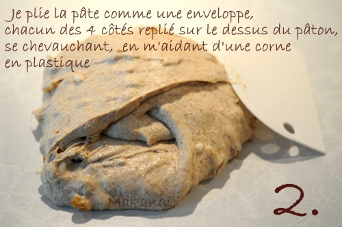 pate-2