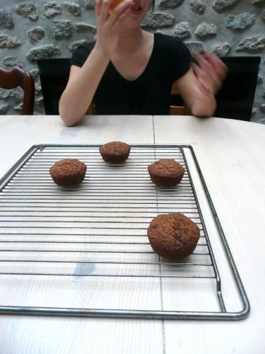 muffins-okara-torrefie