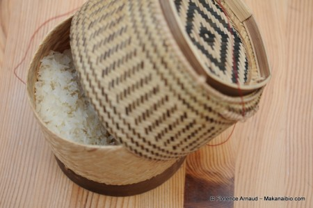 riz gluant cuit