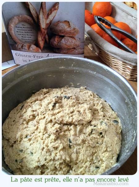 Pâte à pain aux graines 100% farines SG, avant levée - Makanaibio.com