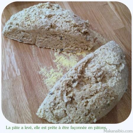 Pâte à pain aux graines 100% farines SG, après levée, coupée en deux - Makanaibio.com