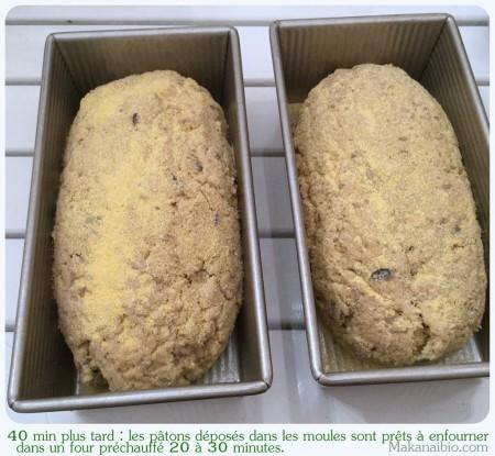 Pâte à pain aux graines 100% farines SG, après levée, coupée en deux puis façonnée - Makanaibio.com