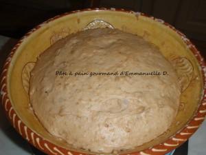le-pain-gourmand-avant-faconnage-emm