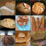 vos-pains
