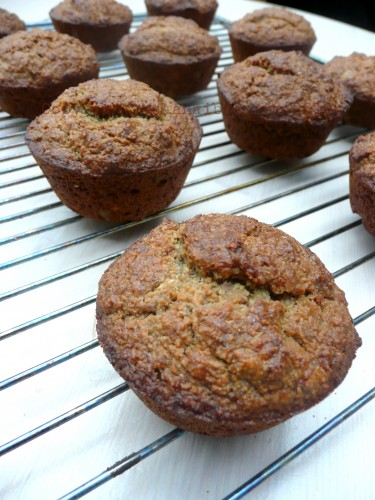 une-armee-de-petits-muffins-okara