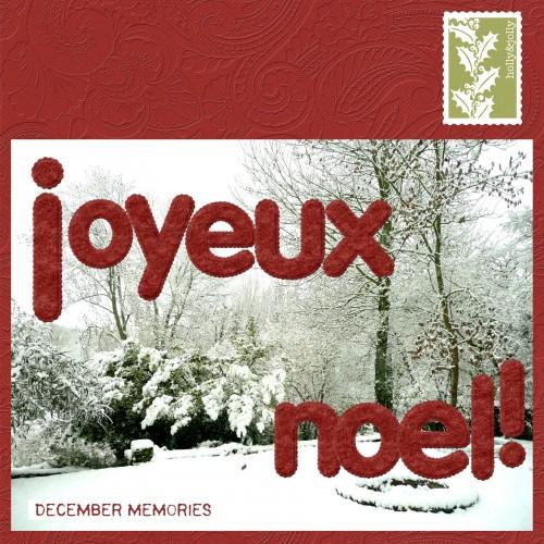 voeux-noel-2010