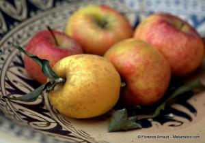 Belles pommes crues de saison