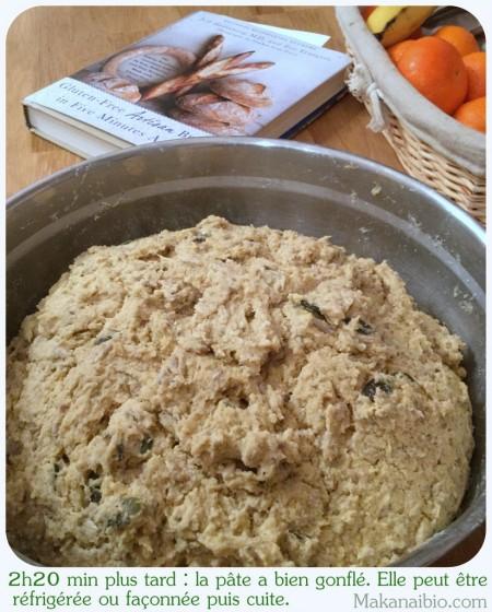 Pâte à pain aux graines 100% farines SG, après levée - Makanaibio.com