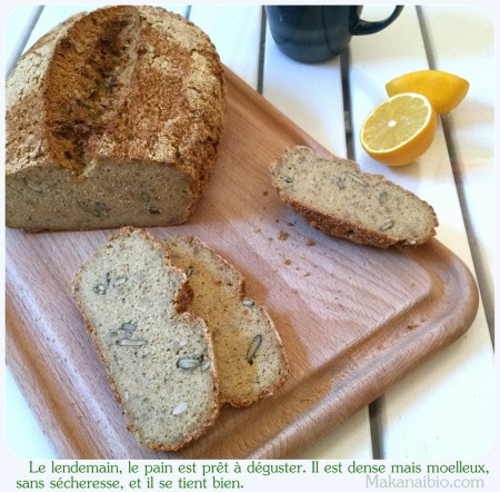Pain aux graines sans amidon ni gommes sans gluten Makanaibio.com