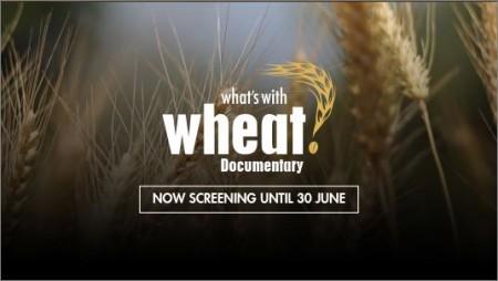 Pour visionner gratuitement le documentaire jusqu'au 30 juin 2016, cliquer sur l'image ci-dessus.