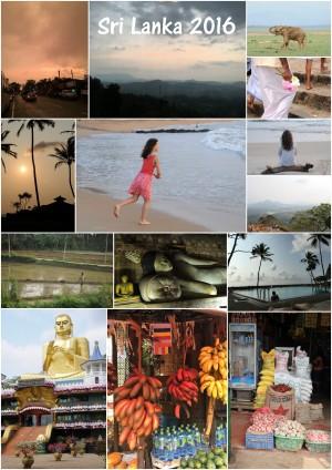 Sri Lanka, oct-nov 2016- Plein de bonheur(s)